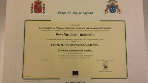 Modelo certificados de profesionalidad pixelado